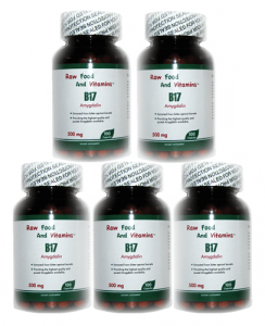 5 Bottles of 500mg Vitamin B17 CAPSULES